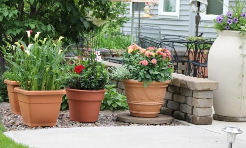 Walk In Garden Box: Walk With Me Again Please...I Love Container Gardening