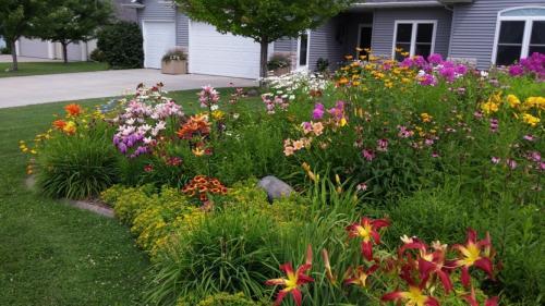 July 10....garden