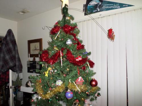 Top half of tree