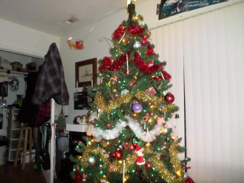 Another view of tree